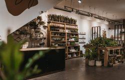 Botanical Scene